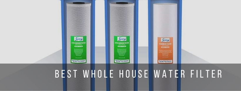 best water filter for whole house